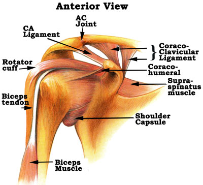 Shoulder SLAP Tear photo